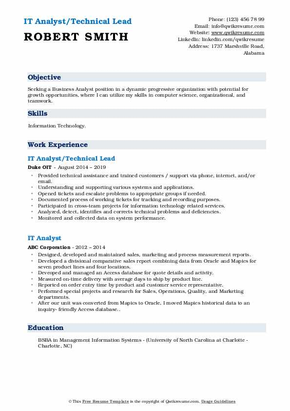 IT Analyst/Technical Lead Resume Format