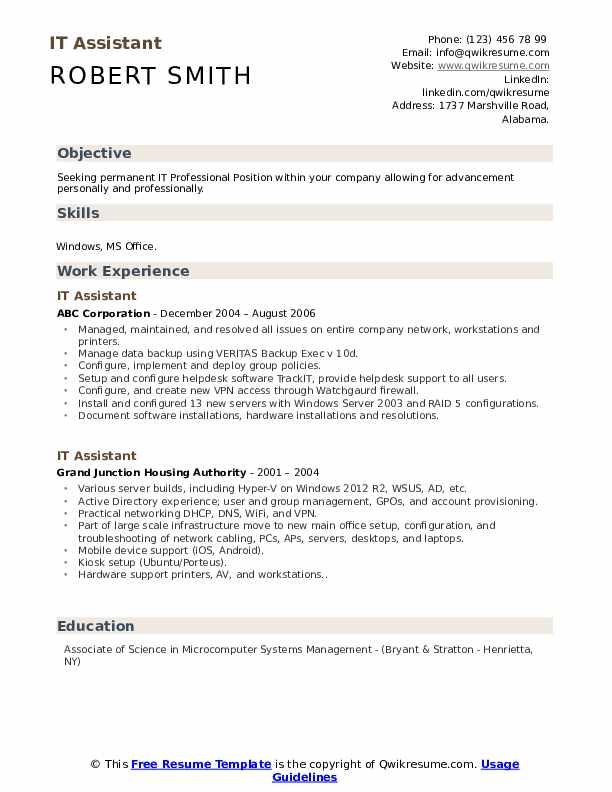 IT Assistant Resume Format