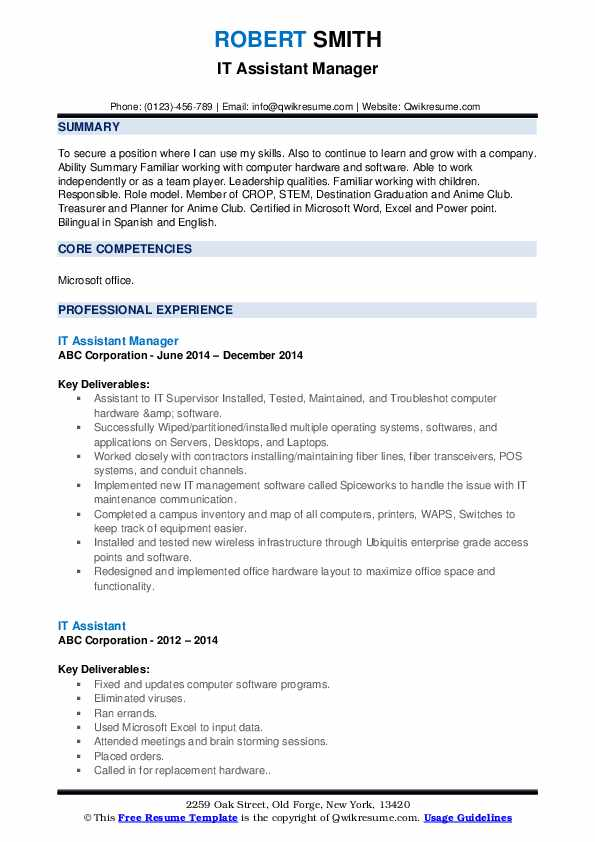 IT Assistant Manager Resume Sample