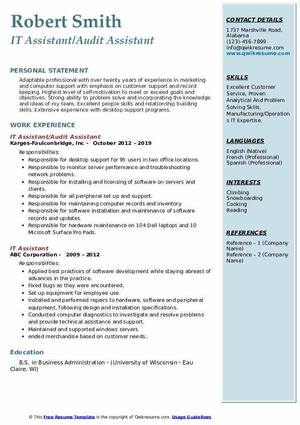 IT Assistant/Audit Assistant Resume Template