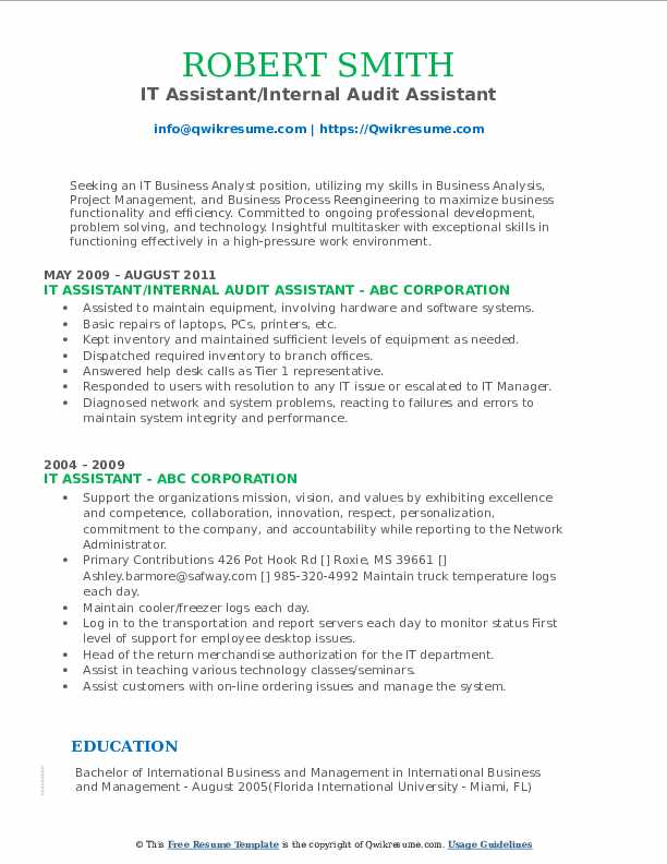 IT Assistant/Internal Audit Assistant Resume Sample
