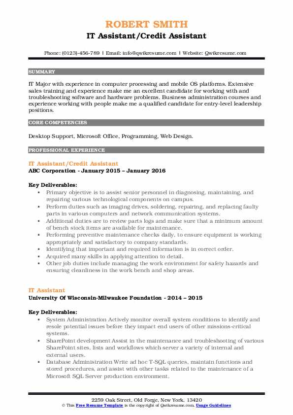 IT Assistant/Credit Assistant Resume Format