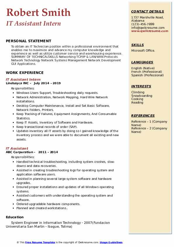 IT Assistant Intern Resume Sample