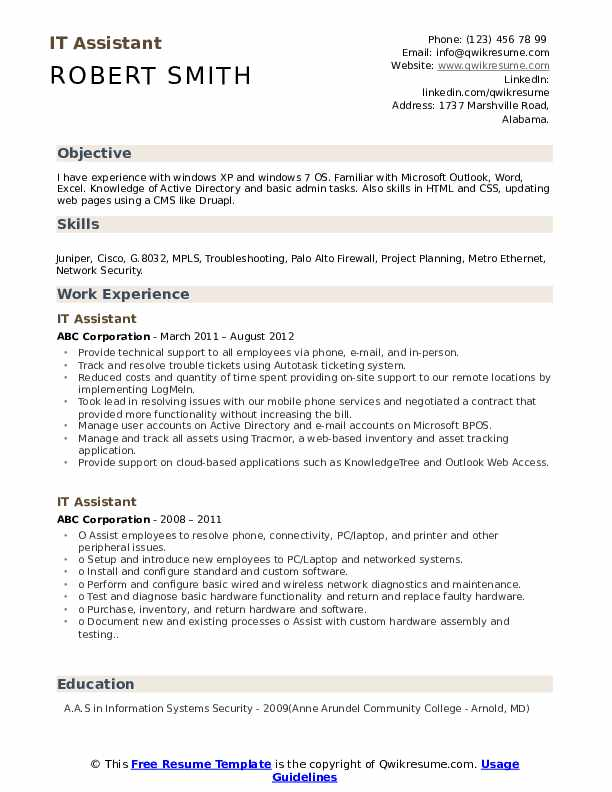 IT Assistant Resume example