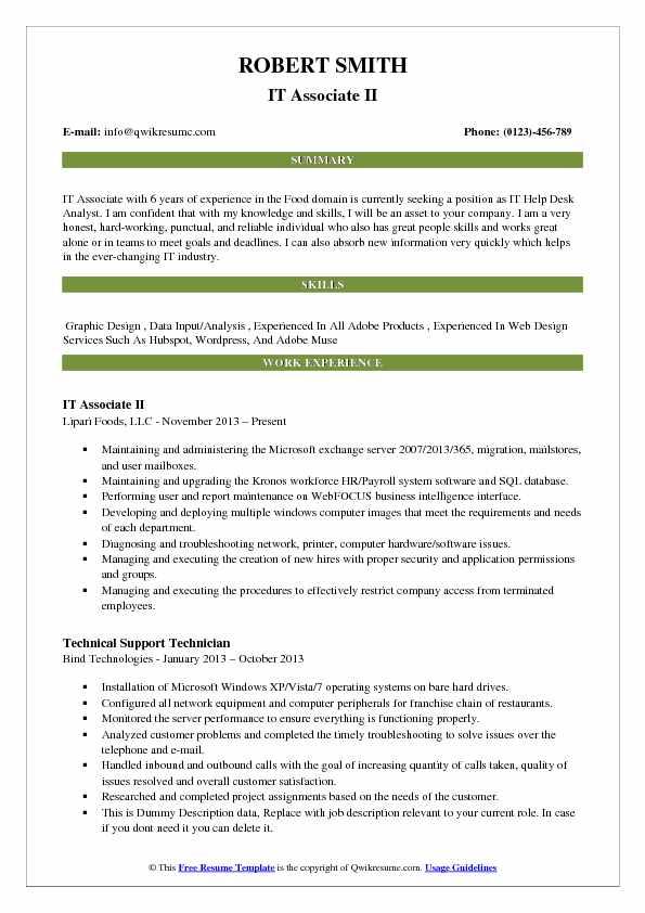 IT Associate II Resume Model