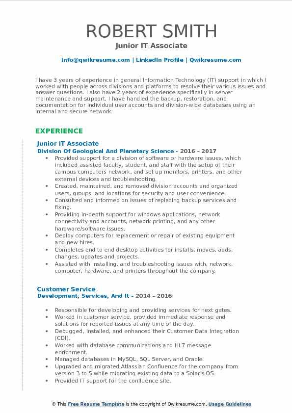 Junior IT Associate Resume Sample