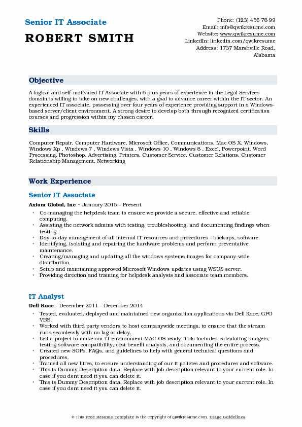 Senior IT Associate Resume Model