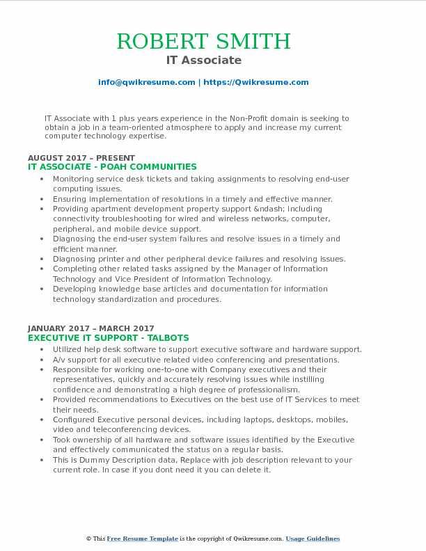 IT Associate Resume Model