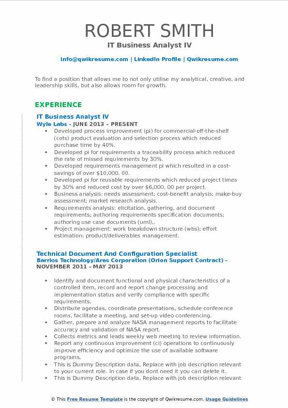 IT Business Analyst IV Resume Model