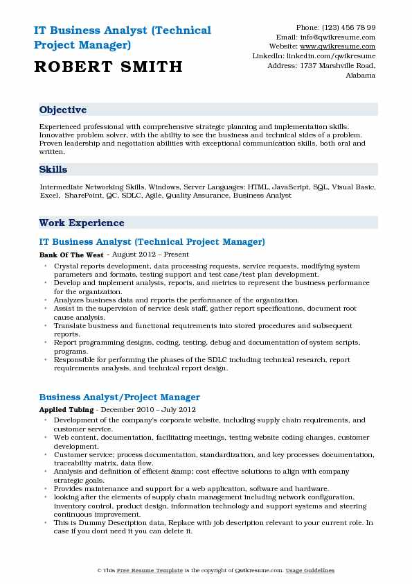 IT Business Analyst (Technical Project Manager) Resume Template