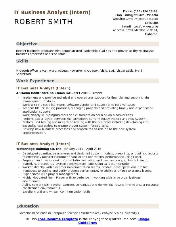 IT Business Analyst (Intern) Resume Sample