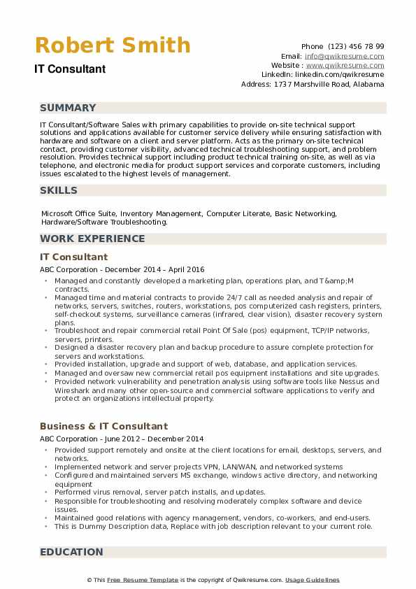 IT Consultant Resume example