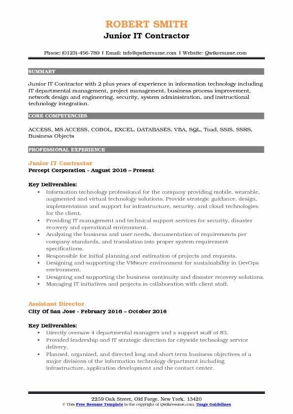 Junior IT Contractor Resume Template