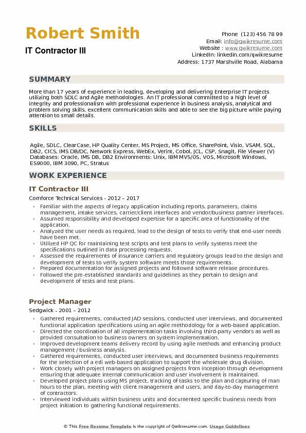 IT Contractor Resume example