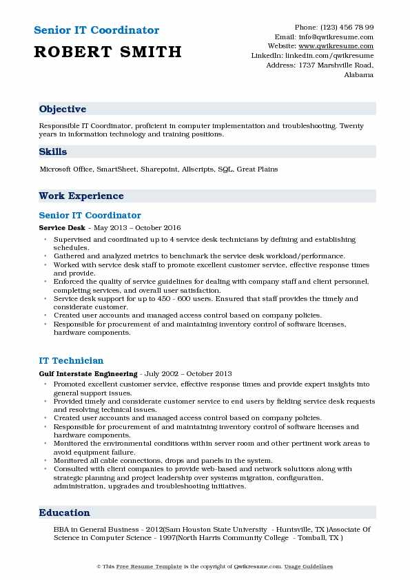 Senior IT Coordinator Resume Template