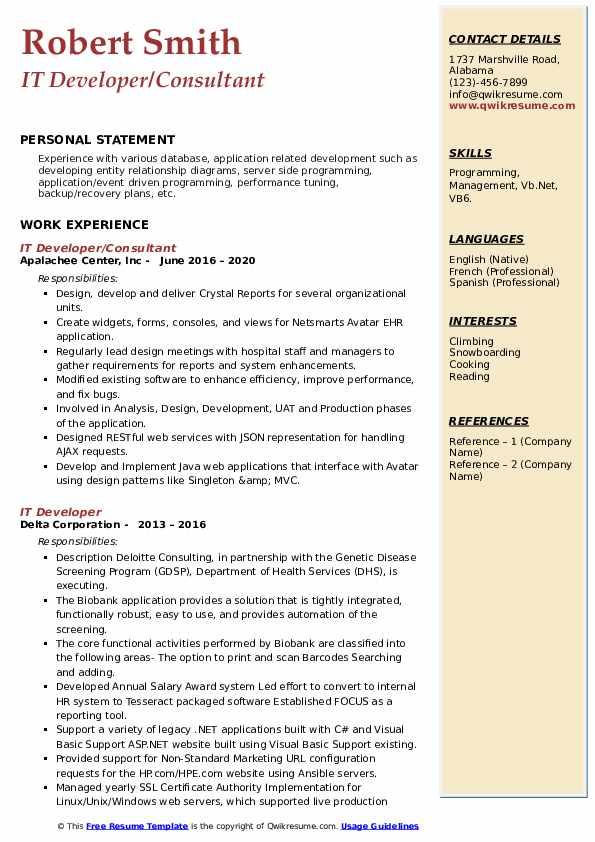 Vb6 developer resume essay management