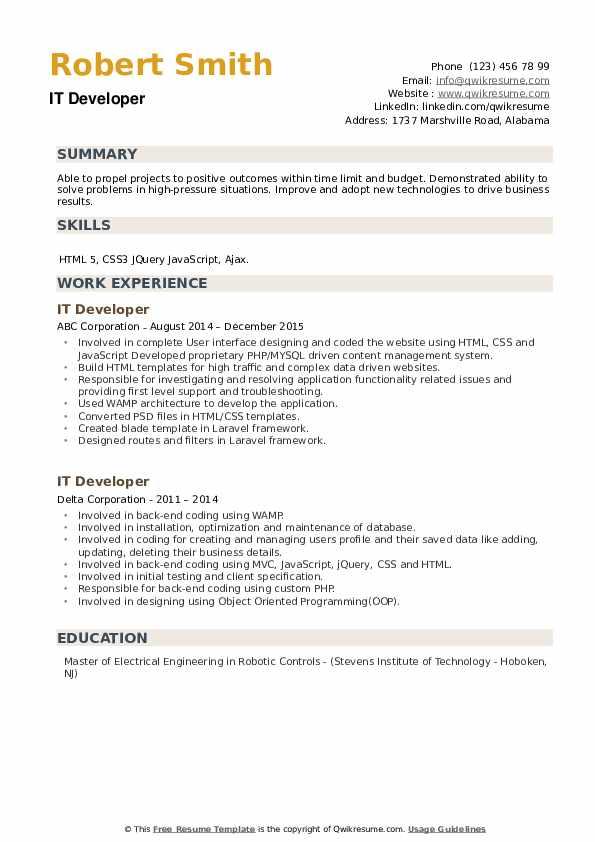 IT Developer Resume example