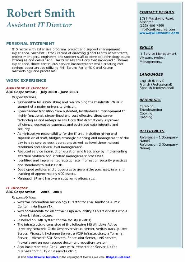 Assistant IT Director Resume Example