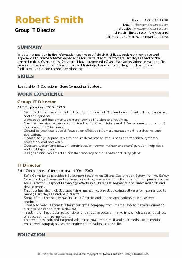 Group IT Director Resume Example