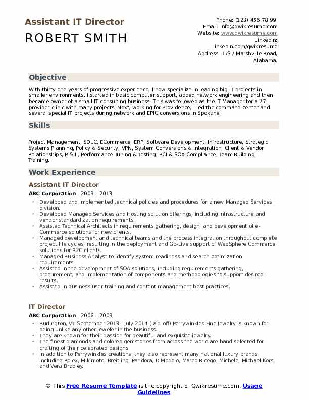 Assistant IT Director Resume Sample