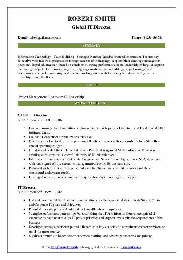 Jr. Chief Information Officer Resume Model