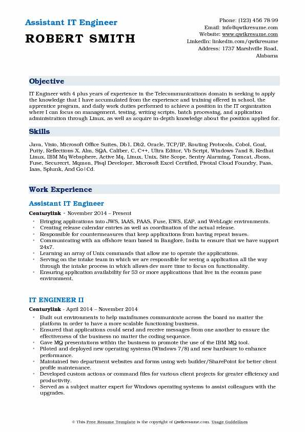 Assistant IT Engineer Resume Format