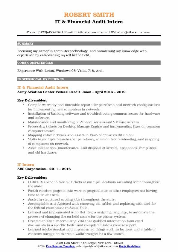 IT & Financial Audit Intern Resume Example