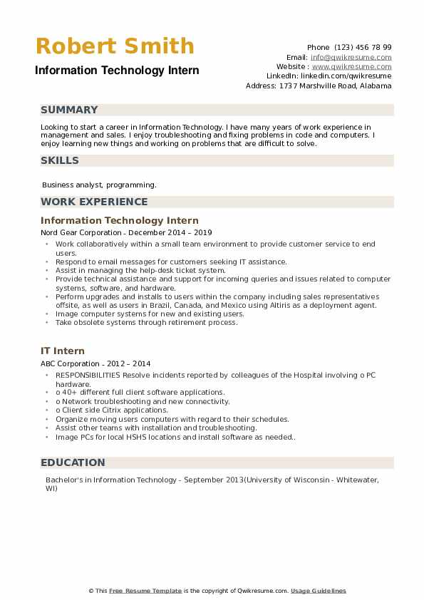 Information Technology Intern Resume Sample
