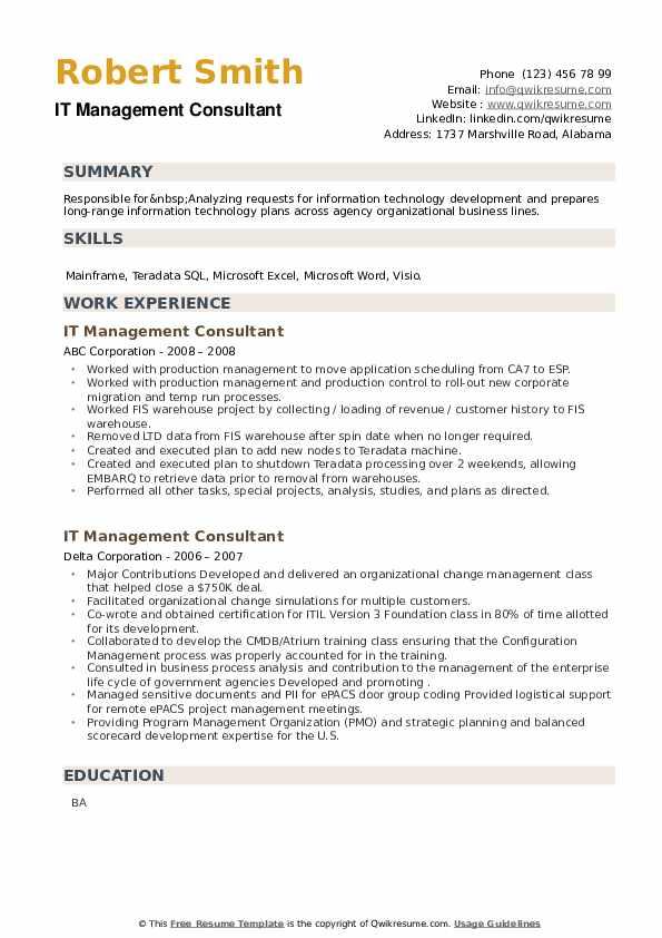 IT Management Consultant Resume example