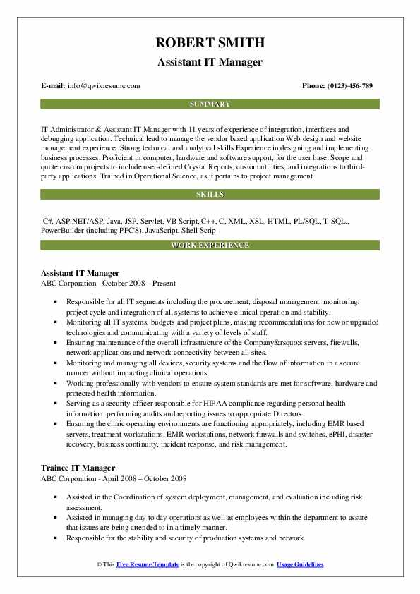 Assistant IT Manager Resume Example