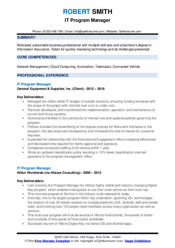 IT Program Manager Resume example