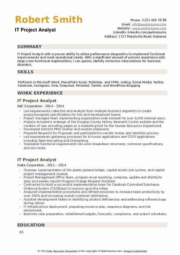 IT Project Analyst Resume example
