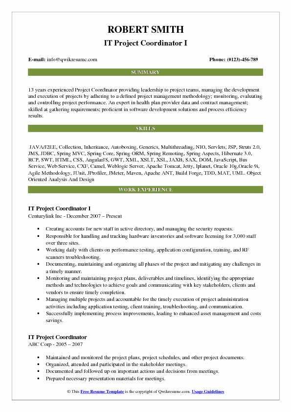 IT Project Coordinator I Resume Template