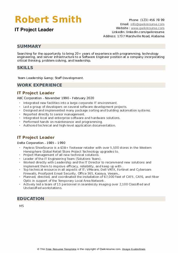 IT Project Leader Resume example