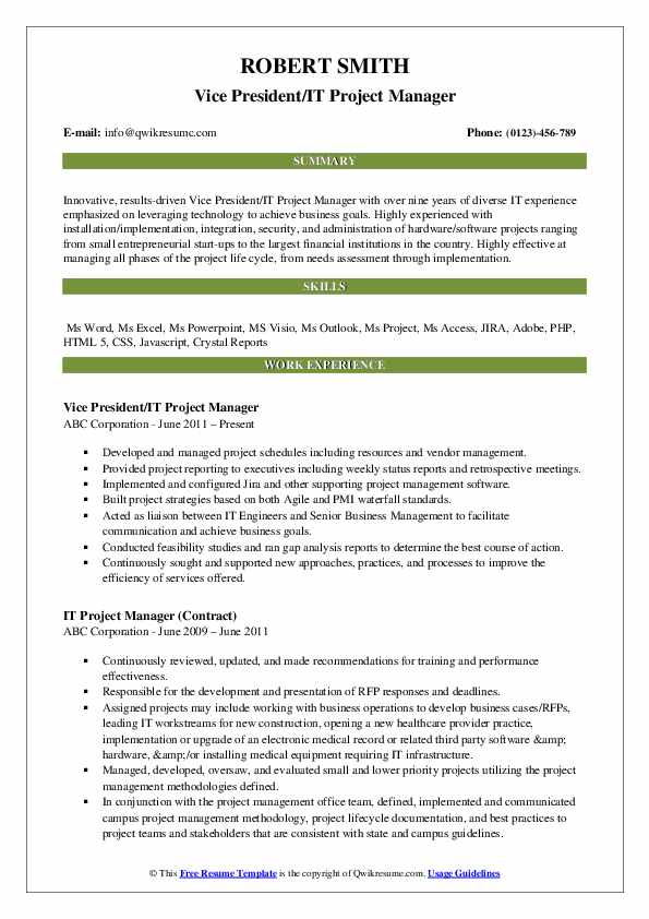 Vice President/IT Project Manager Resume Template