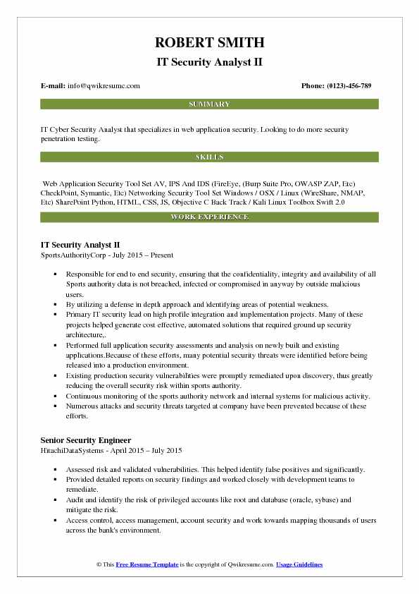 IT Security Analyst II Resume Example