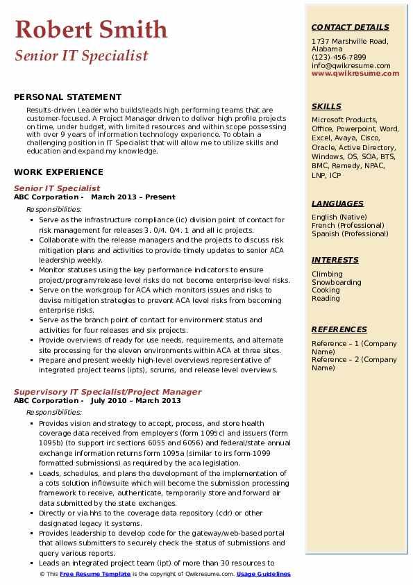 Senior IT Specialist Resume Sample