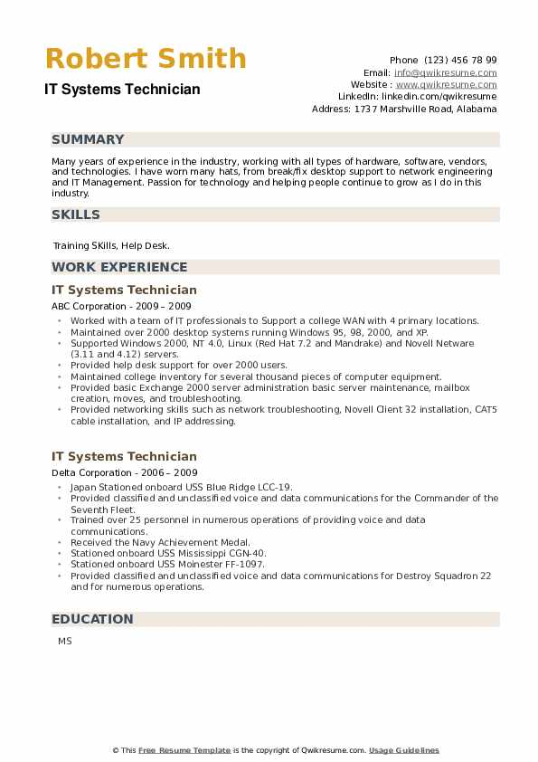 IT Systems Technician Resume example