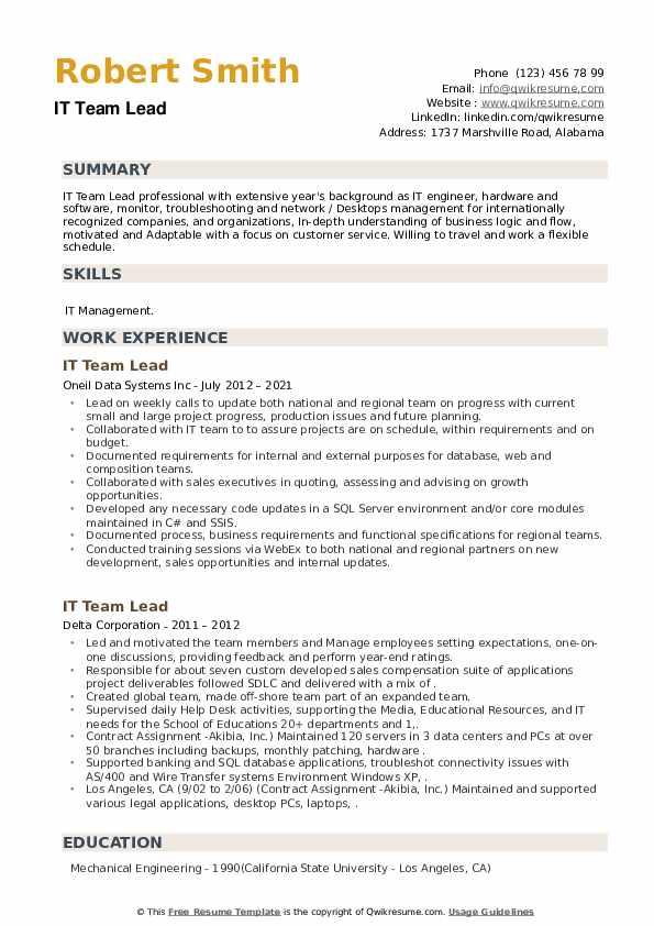 IT Team Lead Resume example