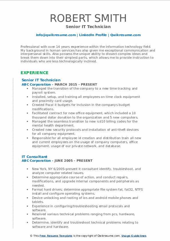Senior IT Technician Resume Model