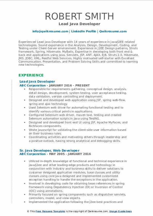 Lead Java Developer Resume Format