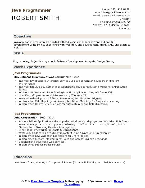 Java Programmer Resume example