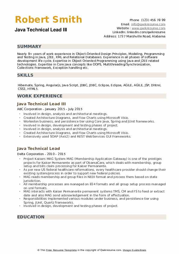 Java Technical Lead Resume example