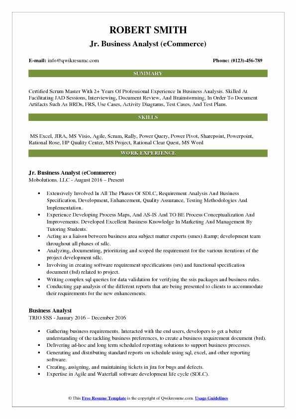 Jr Business Analyst ECommerce Resume Example