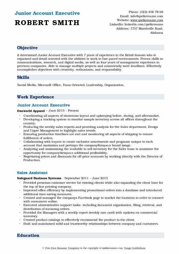 Junior Account Executive Resume Template