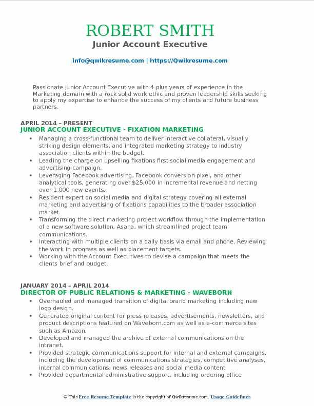 Junior Account Executive Resume Example