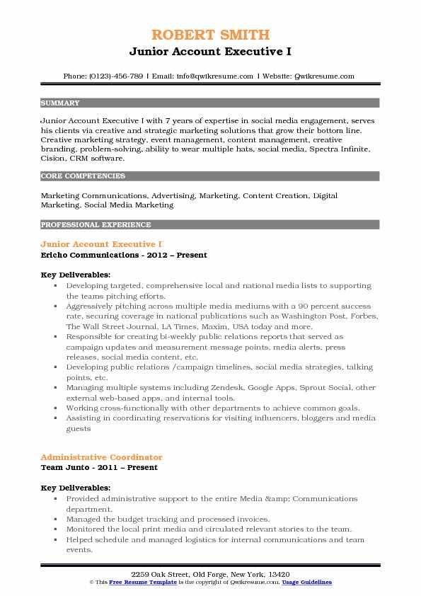 Junior Account Executive I Resume Format