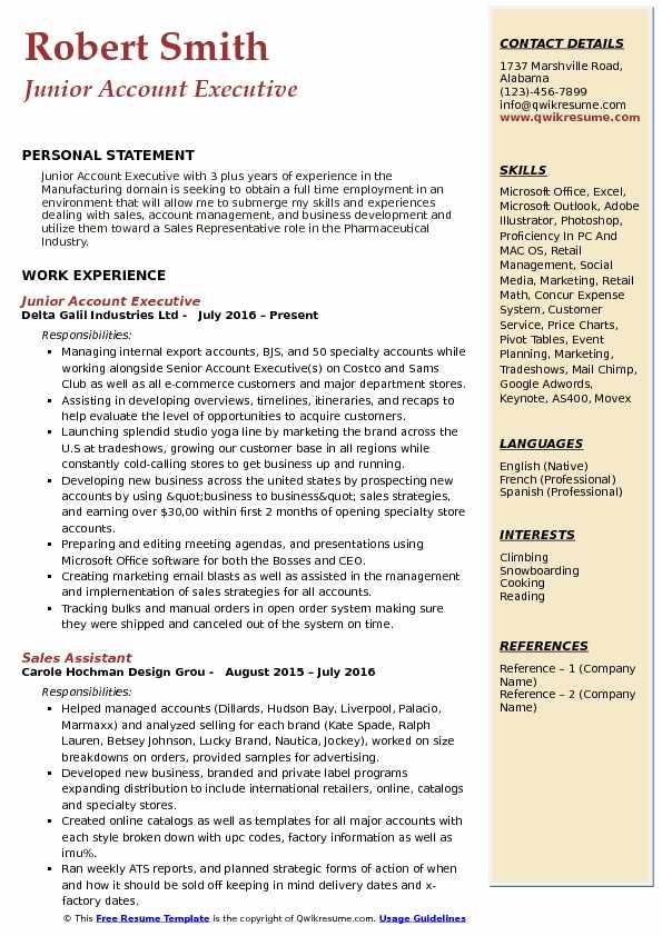 Junior Account Executive Resume Format