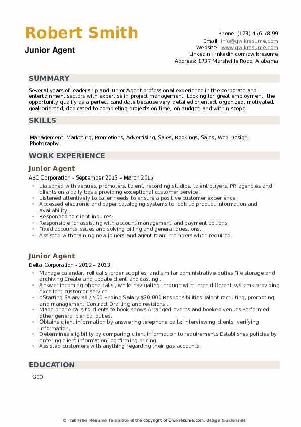 Junior Agent Resume example