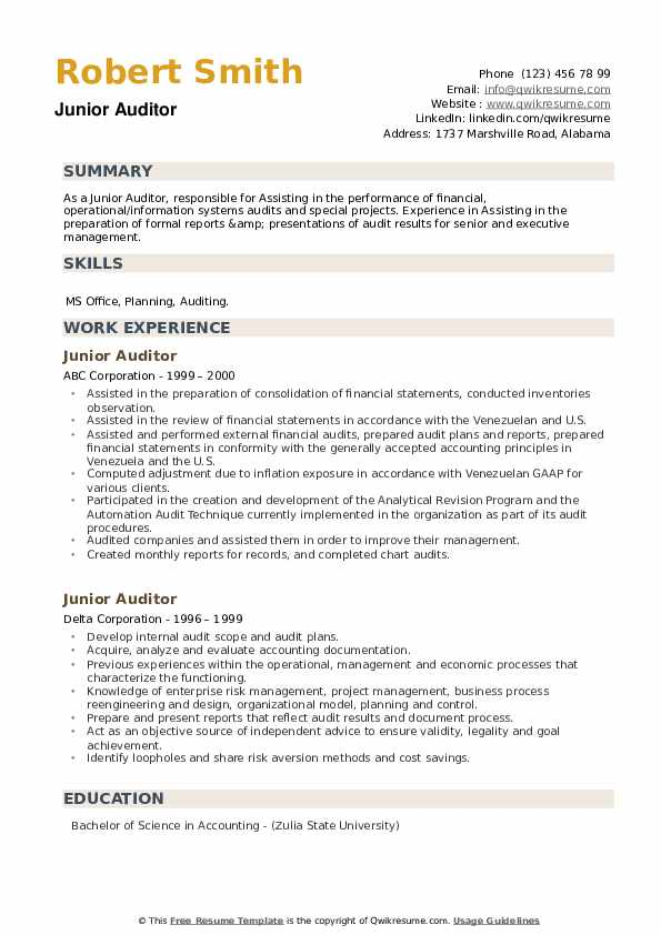 Junior Auditor Resume example